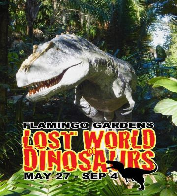 Lost World of Dinosaurs
