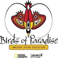 Birds of Paradise: Amazing Avian Evolution