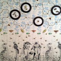 Lecture by Entomologist & Artist Jennifer Angus