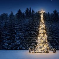 A Seraphic Fire Christmas