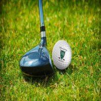 10th Annual Golf for Art