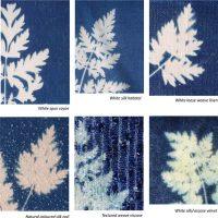 Cyanotypes with Lorna Ruth Galloway