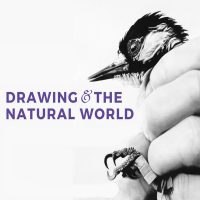 Free@The Frank! Art Workshop: Drawing and the Natural World