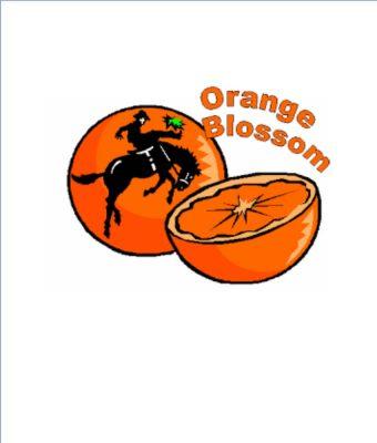 Orange Blossom Festival Kick‑Off Concert