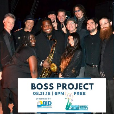 Friday Night Sound Waves presents The Boss Project