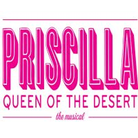 Slow Burn Theatre Co: Priscilla Queen of The Desert The Musical
