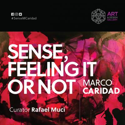 Sense, feeling it or not: Exhibit Opening Night