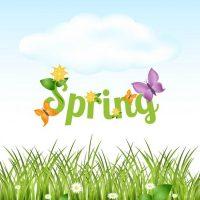 Spring Fling Family Fun Day!