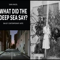 What Did the Deep Blue Sea Say Sara Macel's Photography Explores her Grandmother's Hidden Past