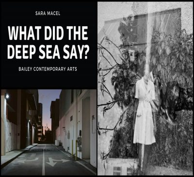 What Did the Deep Blue Sea Say Sara Macel's Phot...