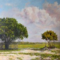 Call to Artists- Plein Air competition Forever Glades