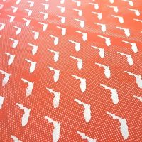 April Repeat Screen Printing for Fabric with Nick Mahshie