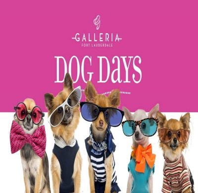 Dog Days at The Galleria