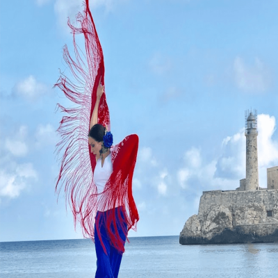 Flamenco Puro