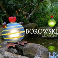 Borowski at Night