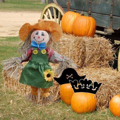 Harvest Festival Pirates & Princesses Weekend