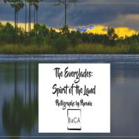 The Everglades: Spirit of the Land Artist Talk
