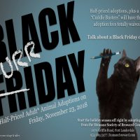 Black Furrday Pet Adoption Event! Friday, November 23
