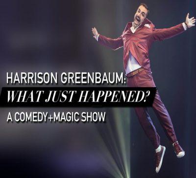 Harrison Greenbaum: What Just Happened?