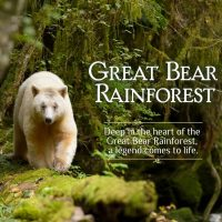 Great Bear Rainforest Opening Weekend Activities