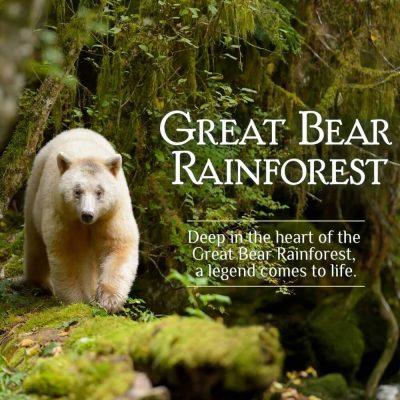 Great Bear Rainforest Opening Weekend Activities