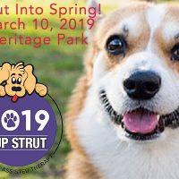 Strut into Spring!