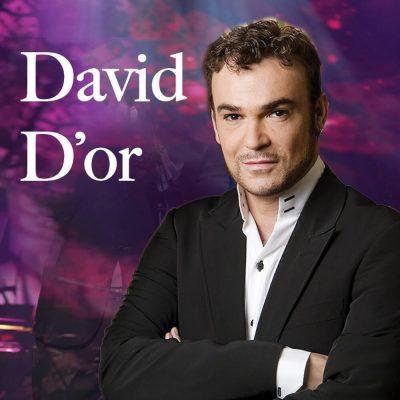 David D'Or in Concert