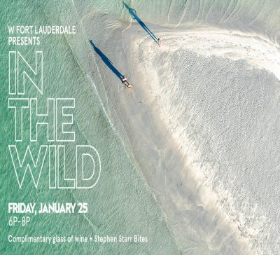 W Fort Lauderdale presents: 'In The Wild' - Dinesh Boaz Aerial Photography Showcase