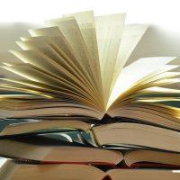 Broward Reads Book Discussion: The Escape Artist b...