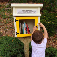 Lil Libraries Call-to-Artists