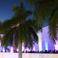 SPECIAL DATE: Starry Nights Presented by Autonation