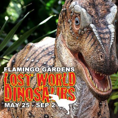 Lost World of Dinosaurs Exhibit at Flamingo Gardens