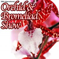 Flamingo Gardens' 38th International Orchid and Bromeliad Show