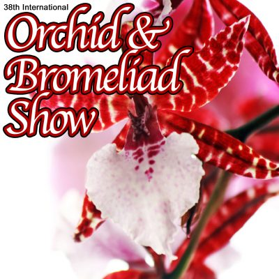 Flamingo Gardens' 38th International Orchid and ...