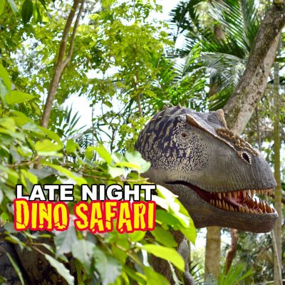 Late Night and Dinosaur Safari at Flamingo Gardens...