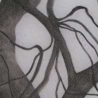 Black and White Charcoal Drawing Workshop at BaCA