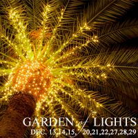 Garden of Lights at Flamingo Gardens