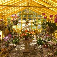 International Orchid and Garden Festival