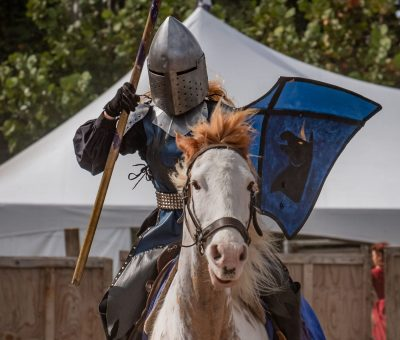 Florida Renaissance Festival Returns!