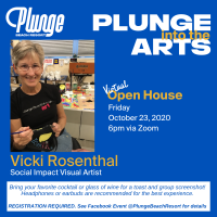 Plunge Into The Arts: Zoom Experience