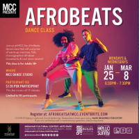 Adult Afro Beat Dance Class