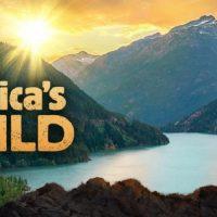Spring Break Camp: Into America's Wild