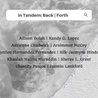 in Tandem: Back | Forth Opening Reception