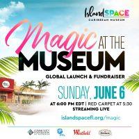 Magic at the Museum Fundraising Event