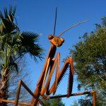 David Rogers' Big Bugs at Flamingo Gardens