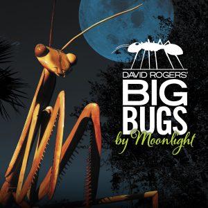 Big Bugs by Moonlight