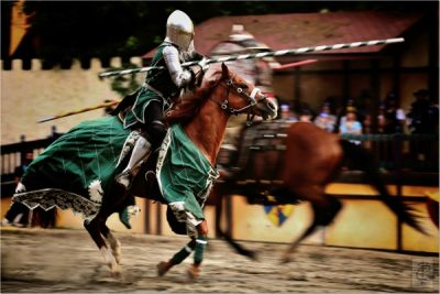 Florida Renaissance Festival celebrates milestone 25th Season in 2017