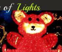 Holiday Fantasy of Lights