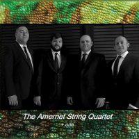 CHAMELEON Chamber Music Series