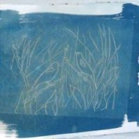 Cyanotype Printing Workshop